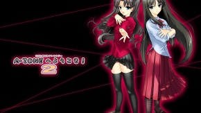 Аниме Type-moon, Tohno Akiha, Рин Тосака, Fate/Stay Night, кроссовер, Повесть о лунной принцессе, Tohsaka Rin