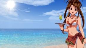 Аниме Love Hina, Любовь и Хина, купальник, Narusegawa Naru, пляж, бикини, карие глаза