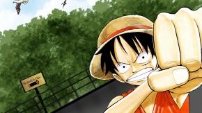 Аниме Monkey D Luffy, животные, Ван Пис, птица, шляпа