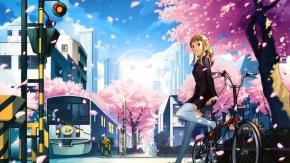 Дерево, велосипед, поезд, цветущая сакура